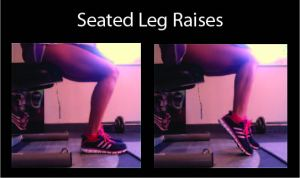 seated leg raises, calf workout, calf exercises, lower leg workout